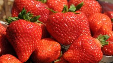 fruchtige erdbeeren ein genuss f r gro und klein querbeet br fernsehen fernsehen. Black Bedroom Furniture Sets. Home Design Ideas