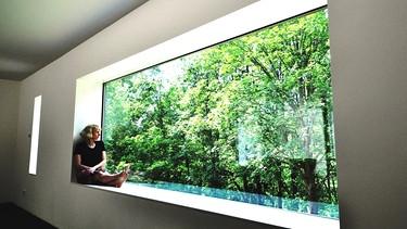 traumh user kologie und energieeffizienz die dritte staffel traumh user br fernsehen. Black Bedroom Furniture Sets. Home Design Ideas