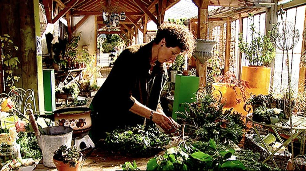 grabgestaltung zu allerheiligen von pflanzen die ber das jenseits wachen unser land br. Black Bedroom Furniture Sets. Home Design Ideas