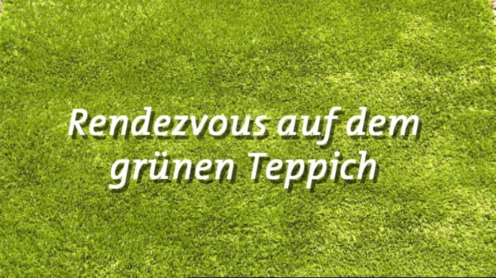 Grüner teppich  Unser Land: Rendezvous auf dem grünen Teppich | Unser Land | BR ...