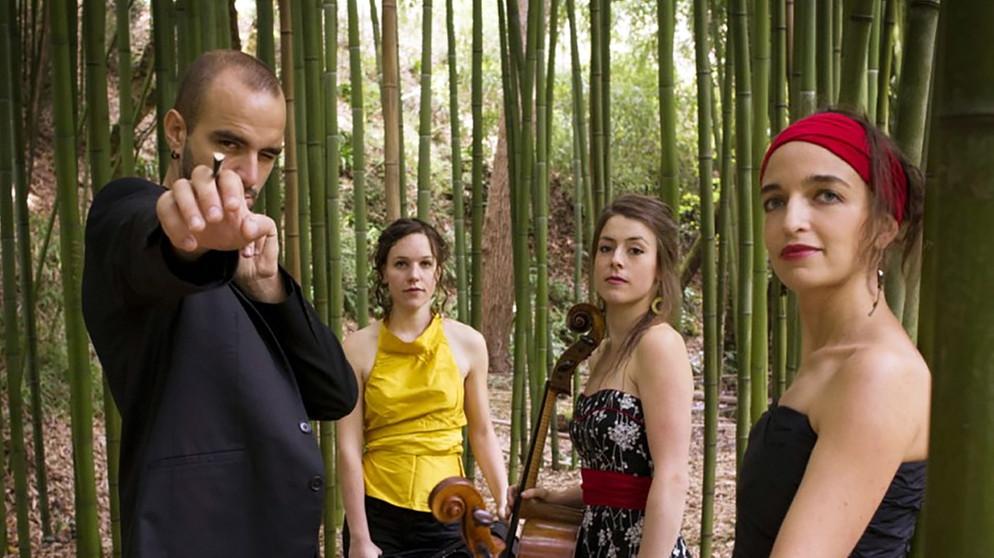 Adriana Hölszky : Pellegrini-Quartett Pellegrini Quartett Hängebrücken
