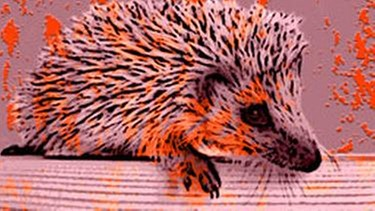 Illustration GRIPS Igel - Lektion 23 | BR | Bild: BR