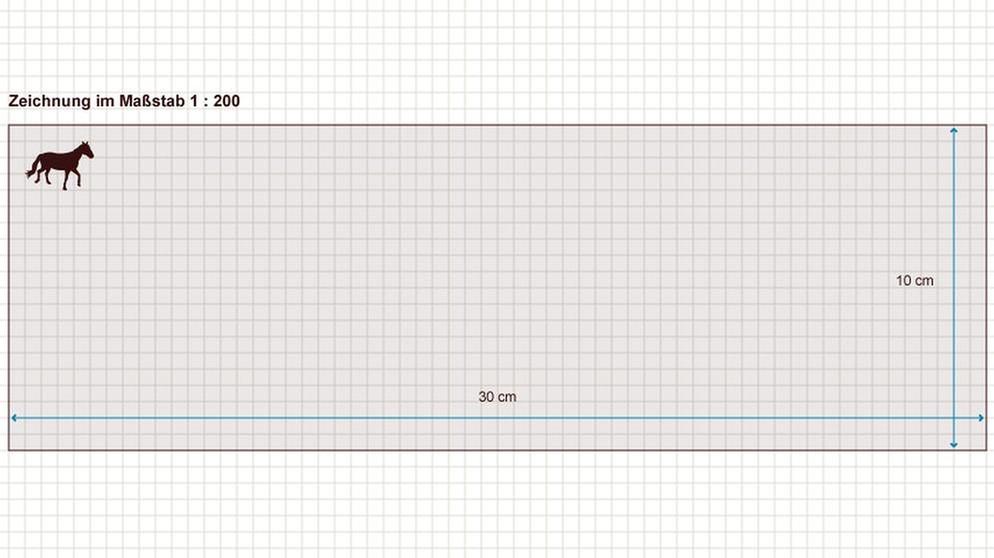 grips mathe 16 mit ma st ben rechnen grips mathe. Black Bedroom Furniture Sets. Home Design Ideas