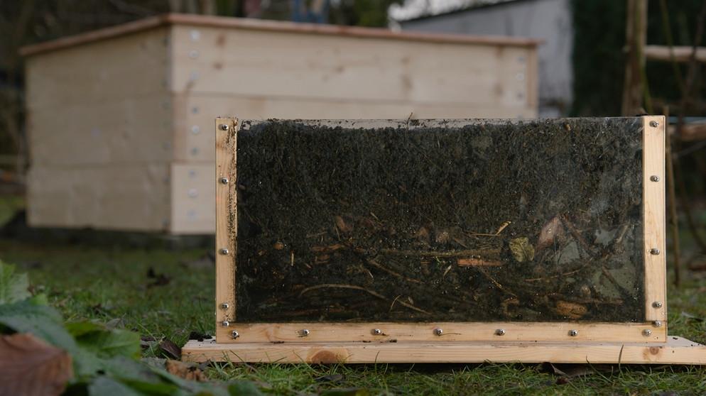 bauanleitung hochbeet bauen querbeet br fernsehen. Black Bedroom Furniture Sets. Home Design Ideas