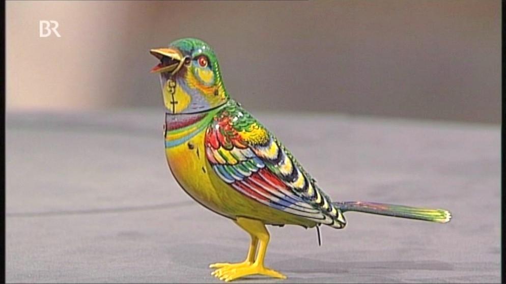 Vogel ein singender spielgefährte spielzeug