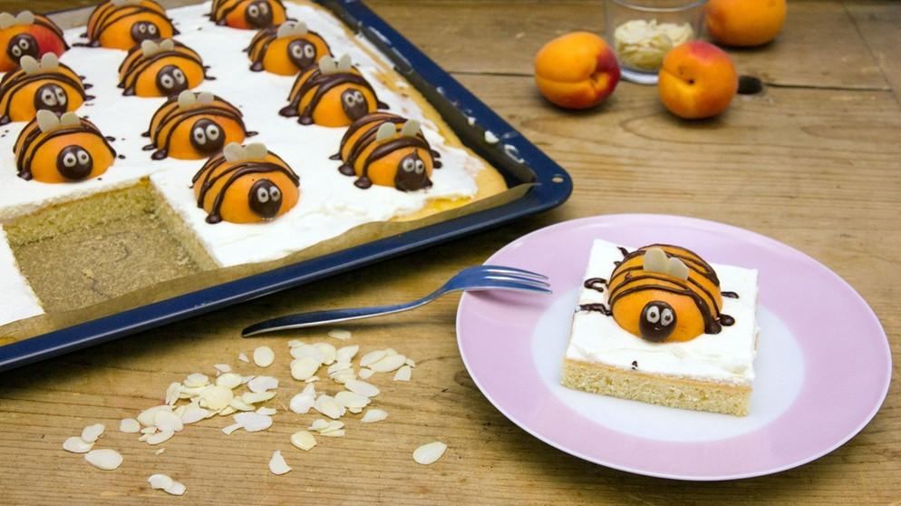 Aprikosenkuchen saftiger kuchen mit aprikosenhummeln for Kuchen zusammenstellen programm