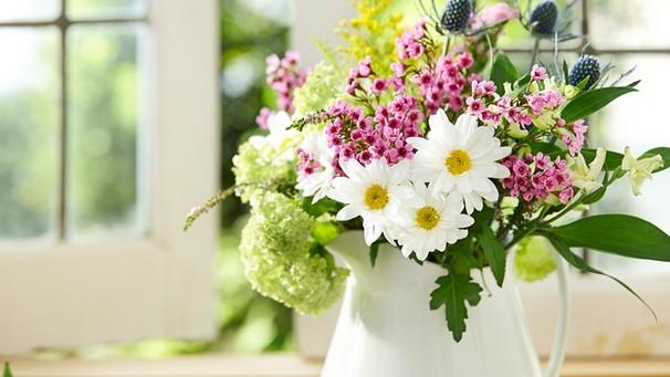 Anschneiden, Wasser, Vase: So Bleiben Schnittblumen Länger Frisch ... Schnittblumen Frische Strause Garten