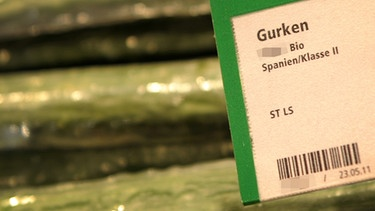 Bio-Gurke in Plastik | Bild: picture-alliance/dpa