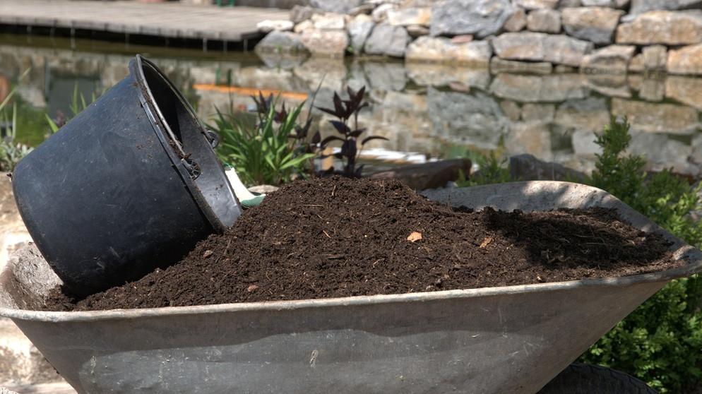 Kompost: Der Beste Dünger | Themen | Br.de Kompost Anlegen Richtige Pflege Garten