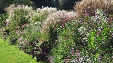 Garten-einmaleins: Einfach Ran An Den Garten | Themen | Br.de Englische Grten Gestalten