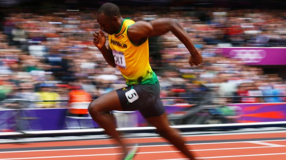Haltung und Bewegung 1: Muskeln und Sehnen | Biologie | alpha Lernen ...