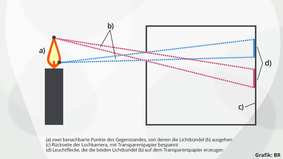 Linsen & Spiegel: Übungen zu Linsen | Physik | alpha Lernen | BR.de