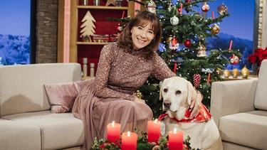 Fernsehprogramm 2019 Weihnachten.Weihnachten Mit Wir In Bayern Br Fernsehen Fernsehen Br De