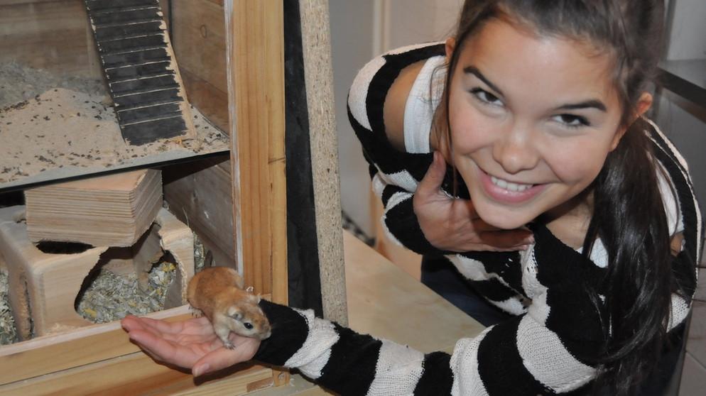 Anna Und Die Haustiere Maus Anna Und Die Haustiere Schauen Br Kinder Eure Startseite