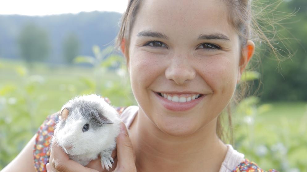 Anna Und Die Haustiere Meerschweinchen Anna Und Die Haustiere Schauen Br Kinder Eure Startseite