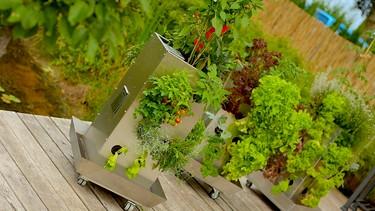 Kubi - ein ganzer Garten auf 1 qm | Bild: André Goerschel