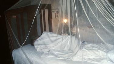 insekten m ckenschutz nicht vergessen ratgeber themen. Black Bedroom Furniture Sets. Home Design Ideas