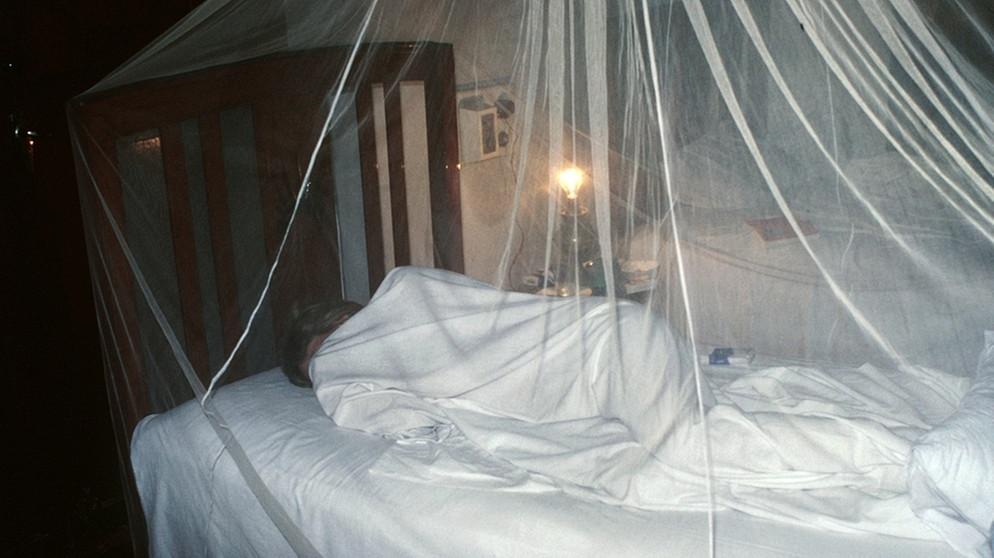 insekten m ckenschutz nicht vergessen das verbrauchermagazin b5 aktuell radio. Black Bedroom Furniture Sets. Home Design Ideas