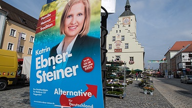 AfD-Plakat in Deggendorf | Bild: picture-alliance/dpa