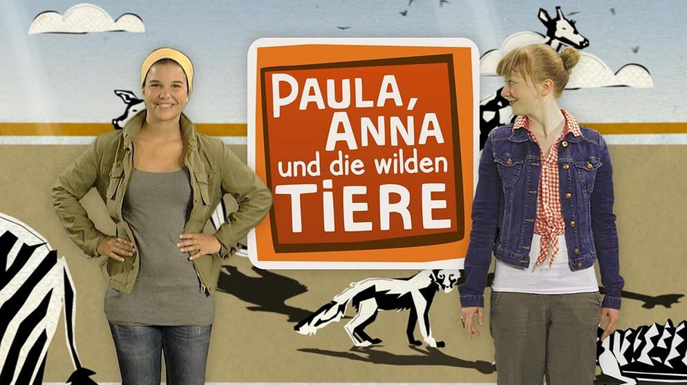 Paula Anna Und Die Wilden Tiere Wildlife Reportagen Fur Kinder
