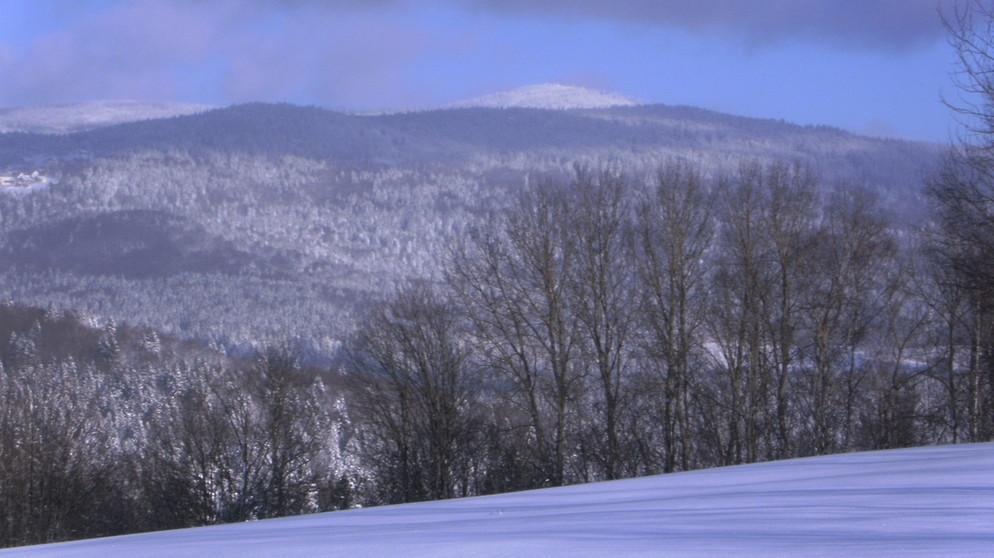 Winter im Bayerischen Wald: Karg, kalt und doch charmant