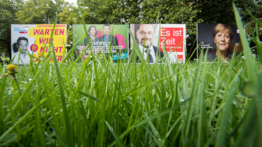 Wahlplakate | Bild: picture-alliance/dpa