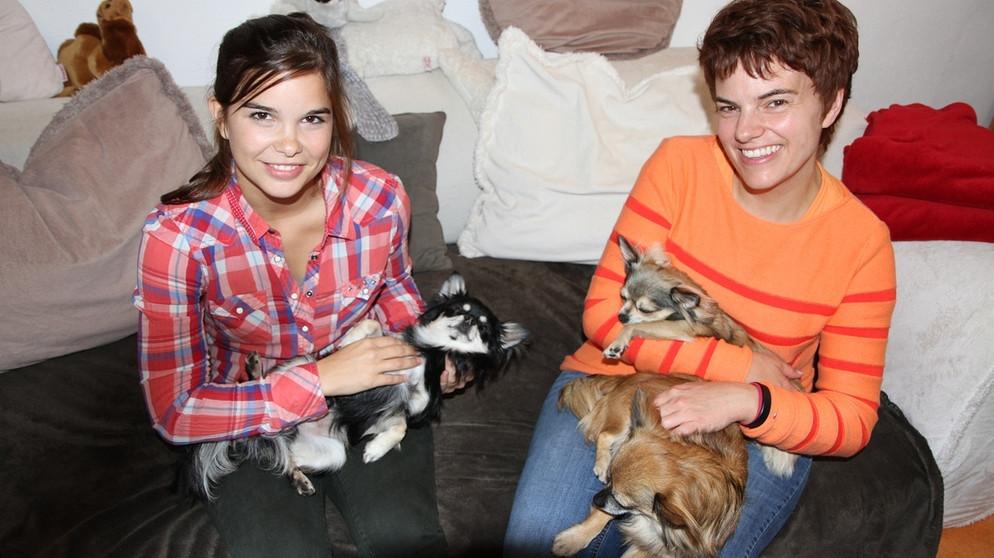 Anna Und Die Haustiere Chihuahua Anna Und Die Haustiere Schauen Br Kinder Eure Startseite