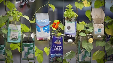 Urban Gardening | Bild: picture-alliance/dpa