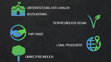 Die Labels der Project Cece Website. | Bild: BR