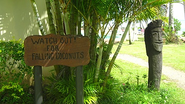 Ein Schild warnt vor herabfallenden Kokosnüssen.    Bild: Marion Sandner