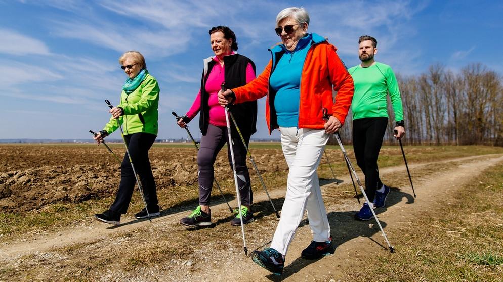 Nordicwalking im Herbst / Rechte: dpa