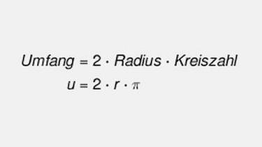 Formel Kreisumfang | Bild: BR
