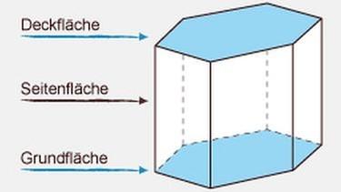 grips mathe 23 prismen grips mathe grips. Black Bedroom Furniture Sets. Home Design Ideas