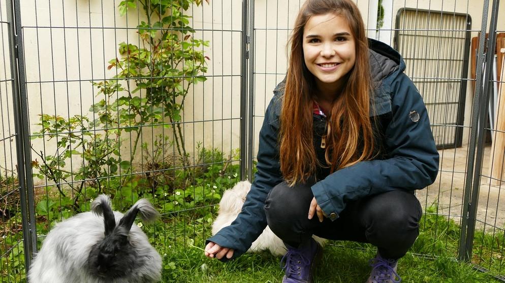 Anna Und Die Haustiere Angorakaninchen Anna Und Die Haustiere Schauen Br Kinder Eure Startseite