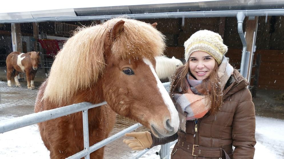 Anna Und Die Haustiere Islandpferd Anna Und Die Haustiere Schauen Br Kinder Eure Startseite