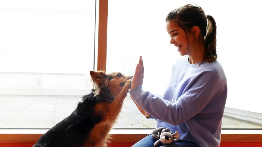 Anna Und Die Haustiere Spezial Schulhund Lunka Im Einsatz Anna Und Die Haustiere Schauen Br Kinder Eure Startseite