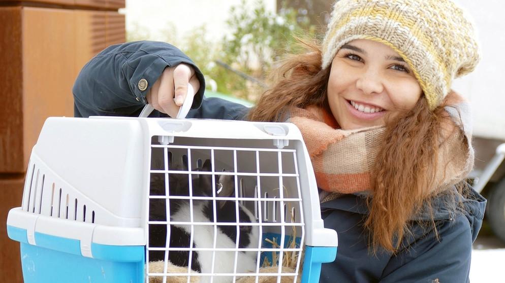Anna Und Die Haustiere Spezial Ein Tag Im Tierhotel Anna Und Die Haustiere Schauen Br Kinder Eure Startseite