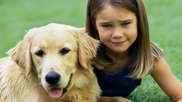 Hunde: Schnüffelnase Und Vier Pfoten