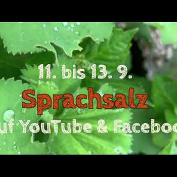 2020 Sprachsalz Trailer | Bild: Sprachsalz (via YouTube)