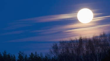 Vollmond | Bild: picture-alliance/dpa