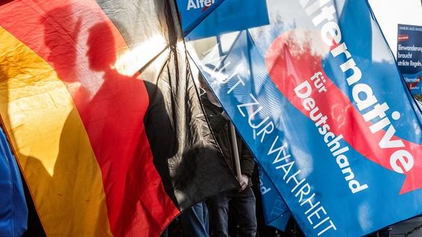 Demo der Partei AfD | Bild: picture-alliance/dpa/Markus Scholz