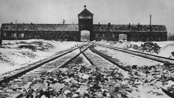 70 Jahre Befreiung Auschwitz Die Erinnerung Wachhalten