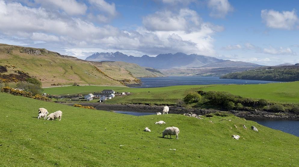 Naturschutz In Schottland Landschaft Als Kapital Breitengrad
