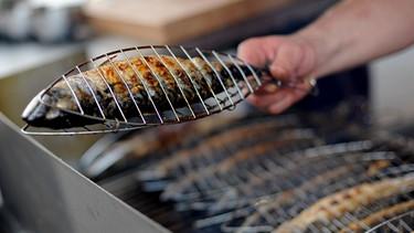 Weber Elektrogrill Lachs Grillen : Ran an den grill tipps zum entspannten grillen themen br