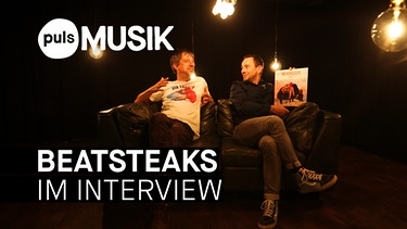 Beatsteaks Interview | Bild: BR
