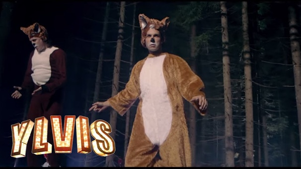 Ylvis - The Fox (What Does The Fox Say?) [Official music video HD] | Bild: TVNorge (via YouTube)