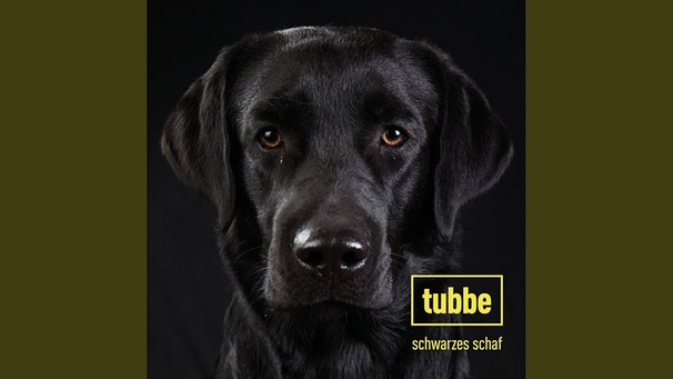 Schwarzes Schaf | Bild: Tubbe - Topic (via YouTube)