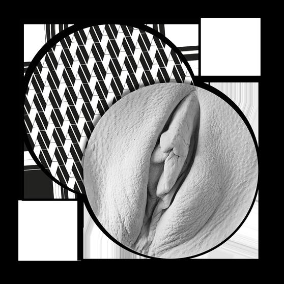 Verschiedene vulva formen bilder