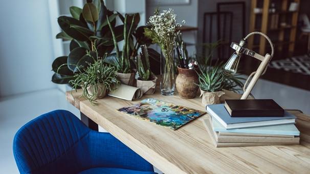 tricks f r die ferien so berleben ihre pflanzen den urlaub bayern 1 radio. Black Bedroom Furniture Sets. Home Design Ideas