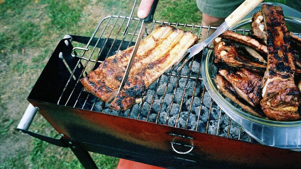 Aldi Holzkohlegrill Ungesund : Grillkohle test: welche grillkohle ist in ordnung? umweltkommissar